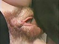 Vikas Vagina Get Visited Fm14 Video 2569162
